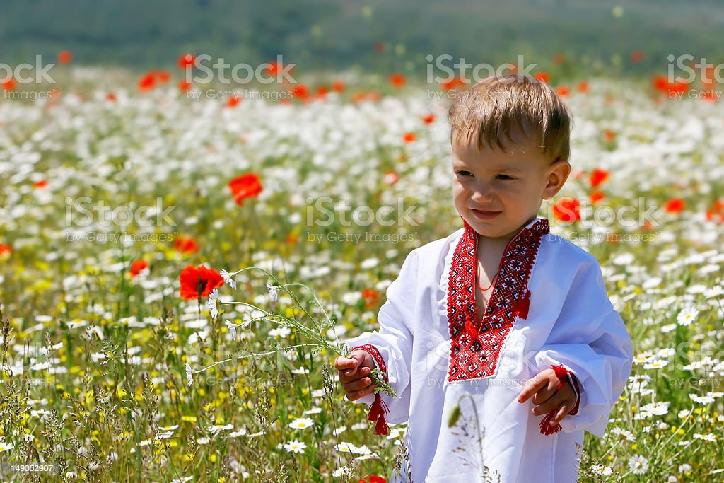 Boy in traditional clothes in poppy field royalty-free stock photo