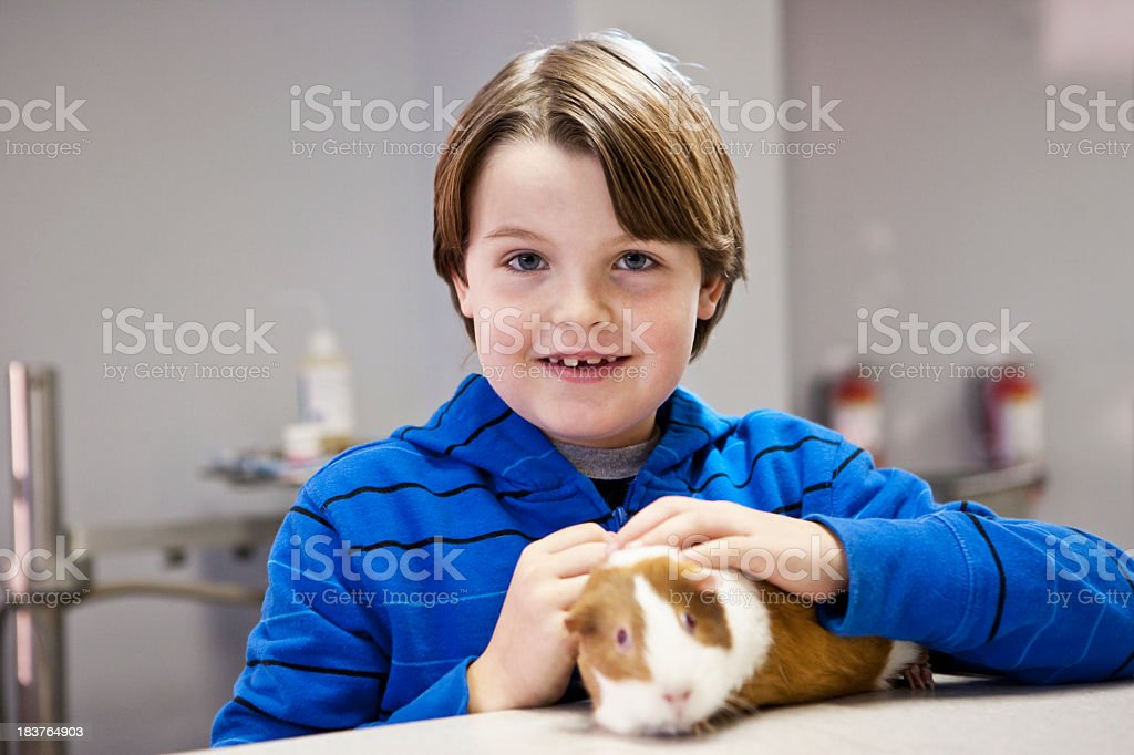 Boy in vet office with pet guinea pig stock photo