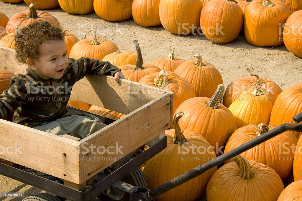 Boy in Wagon at Pumpkin Patch stock photo