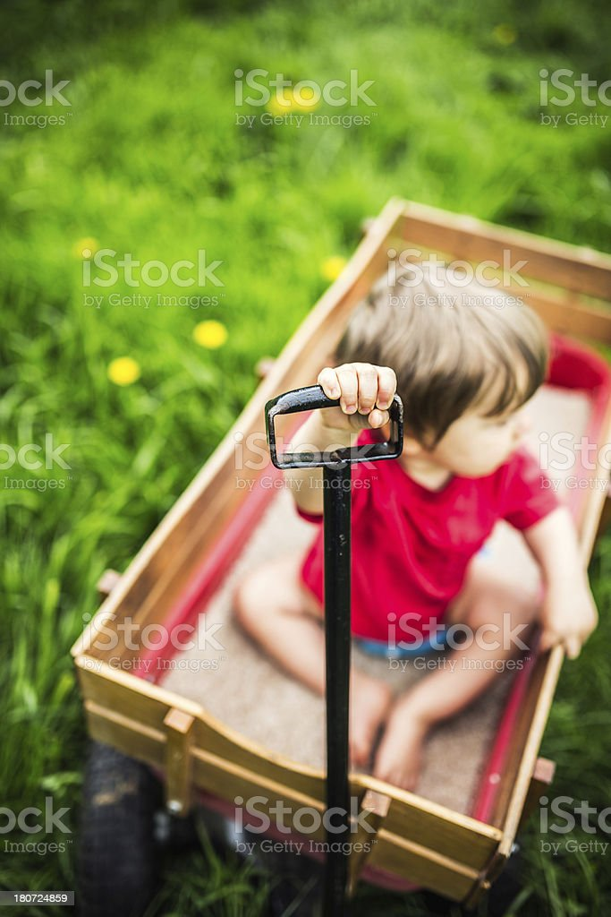 Boy in Wagon on Green Grass royalty-free stock photo