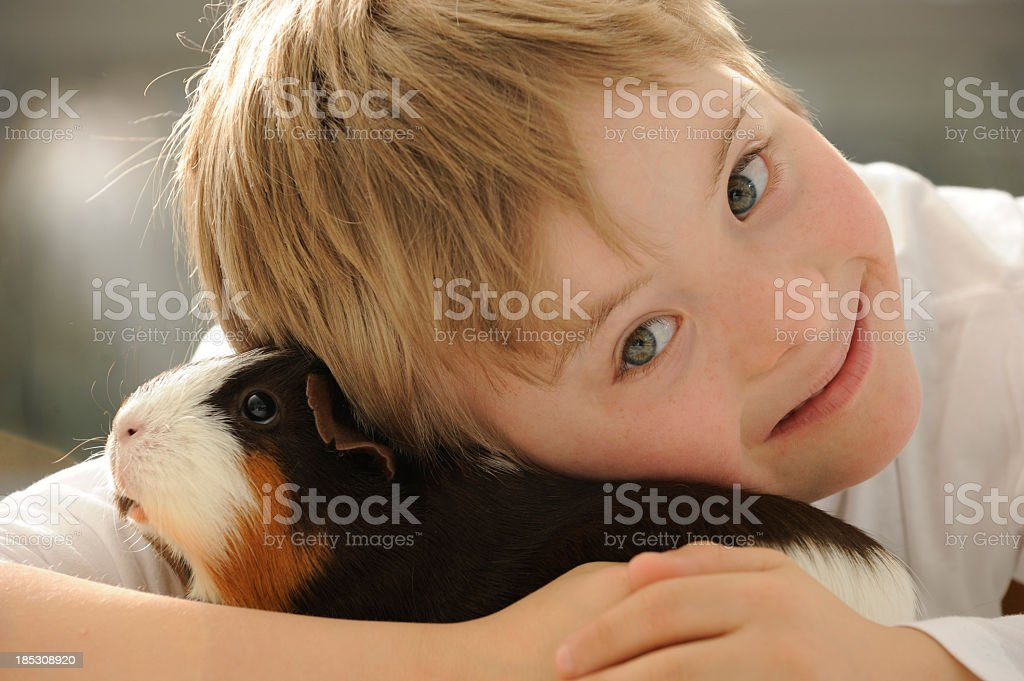 Boy is hugging guinea pig royalty-free stock photo