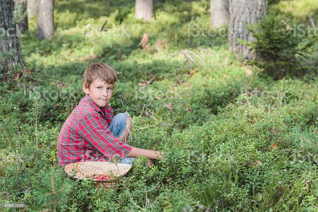 Boy is picking berries in wide-brimmed handmade straw hat stock photo