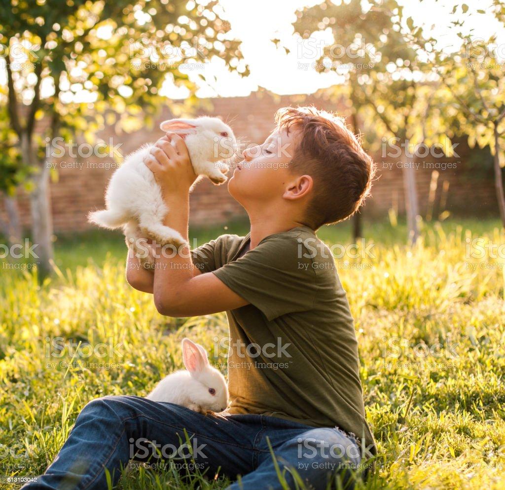 Boy kissing his rabbit stock photo