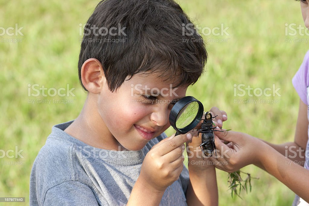 Boy Looking At Beetle Through Magnifying Glass stock photo