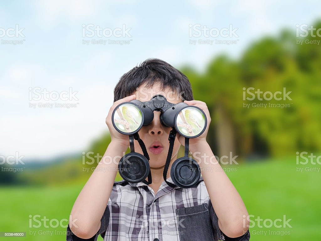 boy looking birds by binoculars stock photo