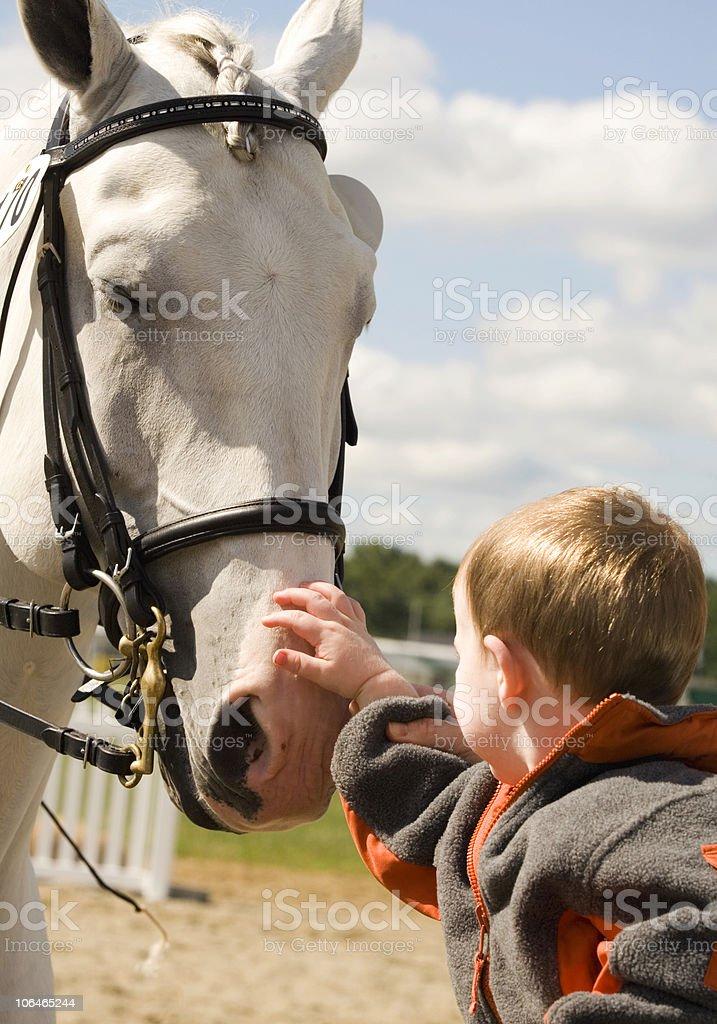 Boy Meets Horse royalty-free stock photo