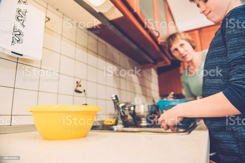 Boy of Twelve and Mother Cleaning Radicchio, Home Kitchen, Europe stock photo