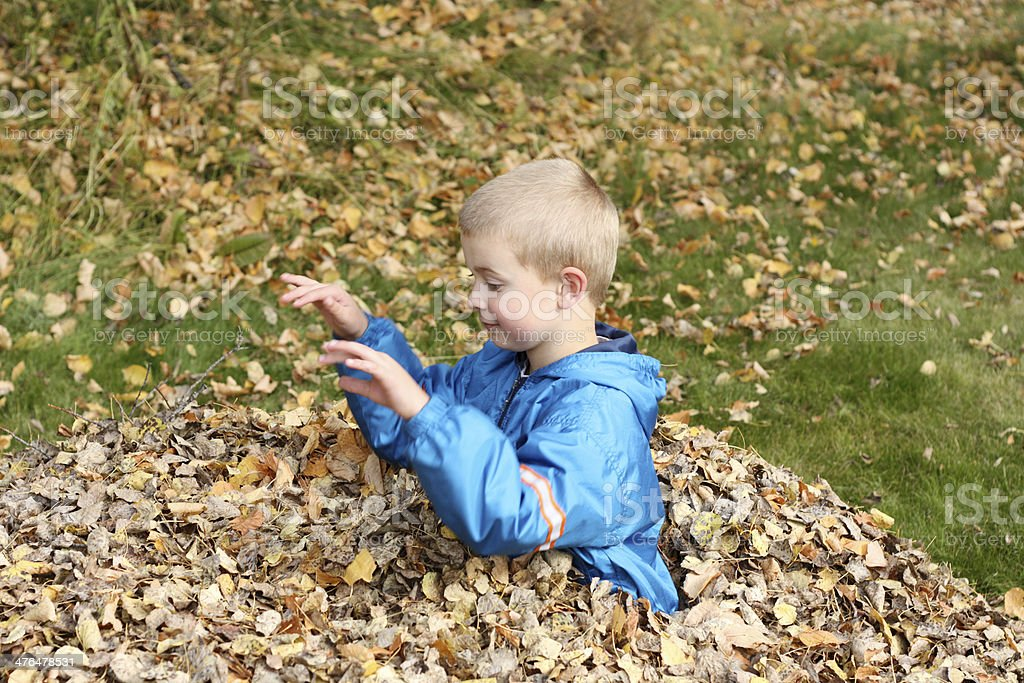 Boy Playing In Fall Leaves royalty-free stock photo