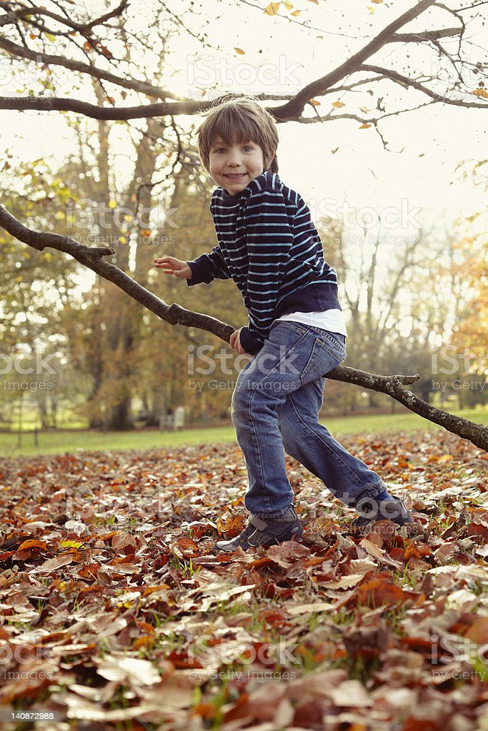 Boy playing on tree outdoors stock photo