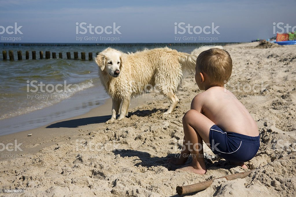 Boy playing with dog on beach stock photo