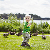 Boy playing with ducks in yard