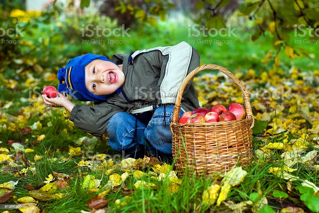 boy posing outdoors with apples royalty-free stock photo