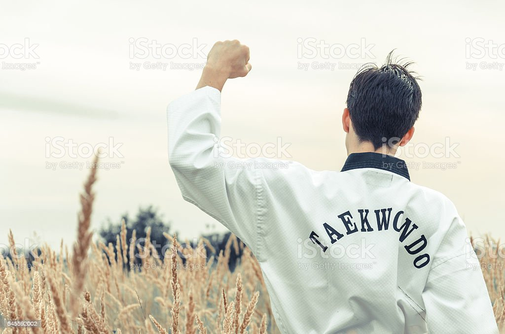 boy practicing martial art in nature stock photo