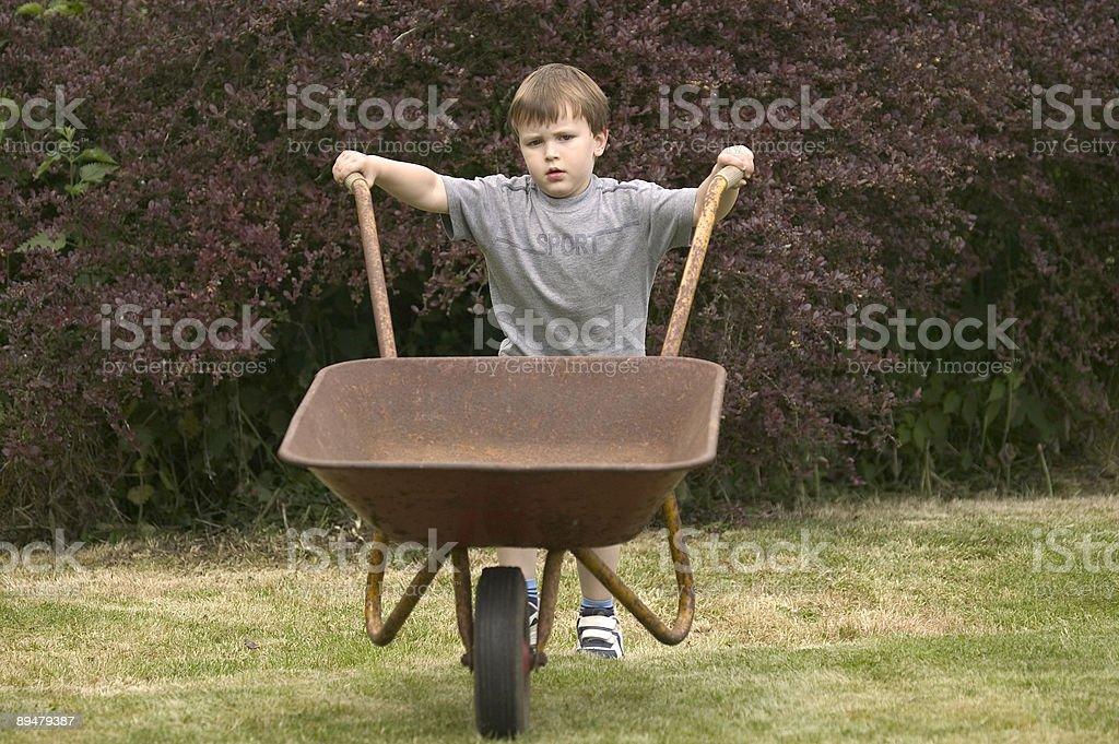 Boy pushing a wheelbarrow stock photo