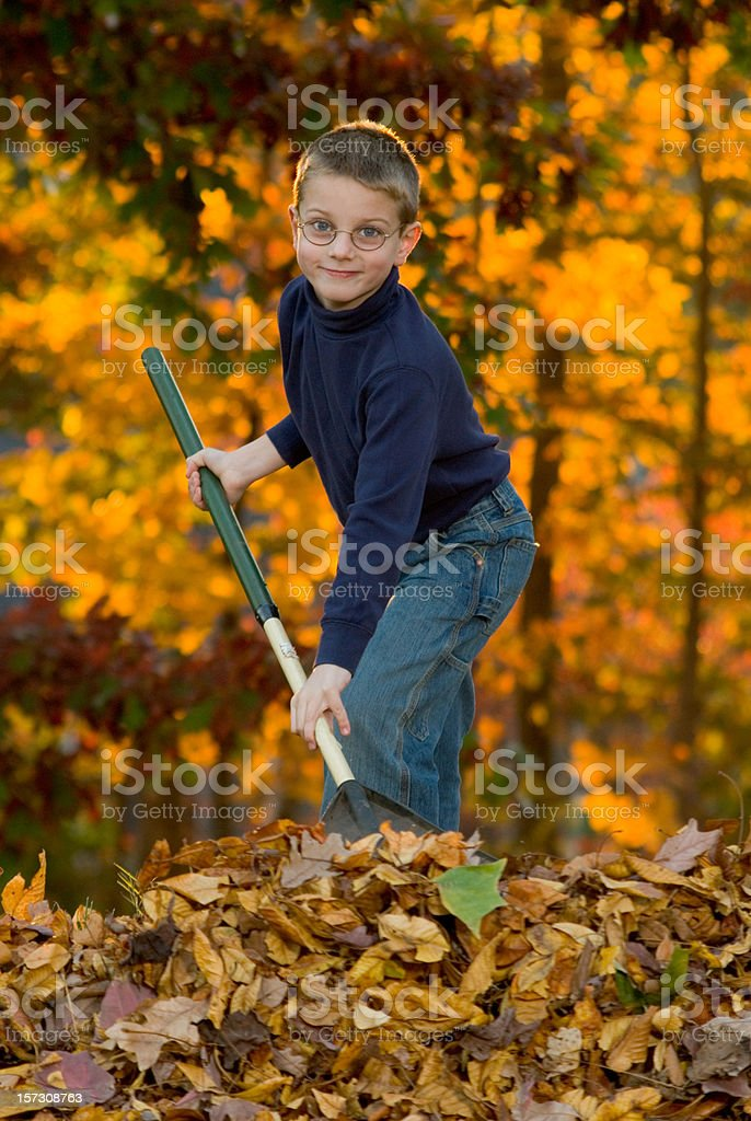 Boy Raking Leaves 1 royalty-free stock photo