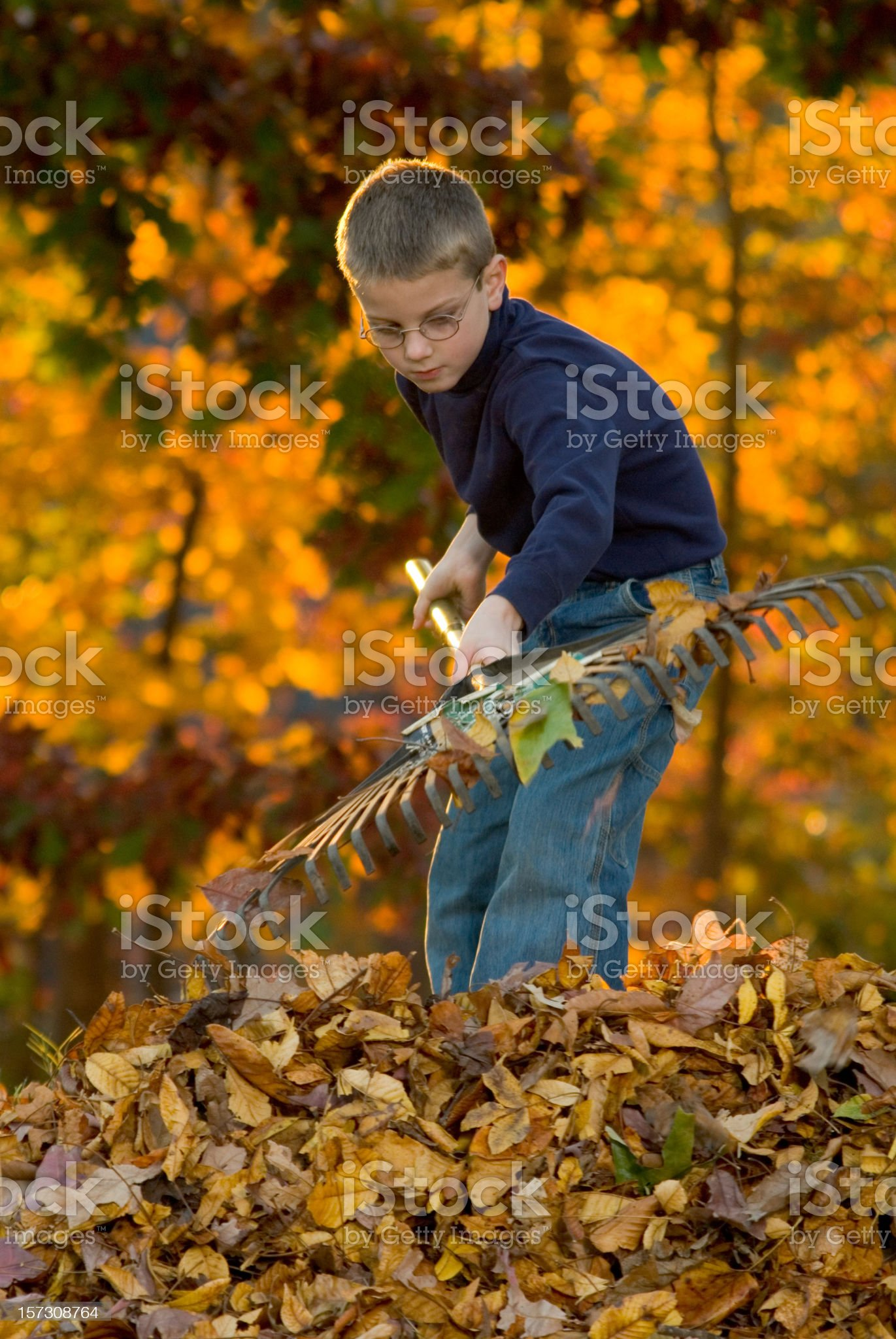 Boy Raking Leaves 2 royalty-free stock photo