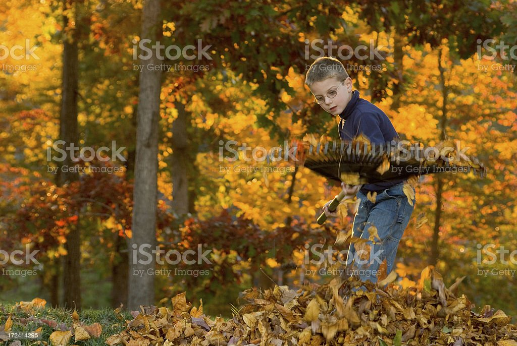 Boy Raking Leaves 4 royalty-free stock photo