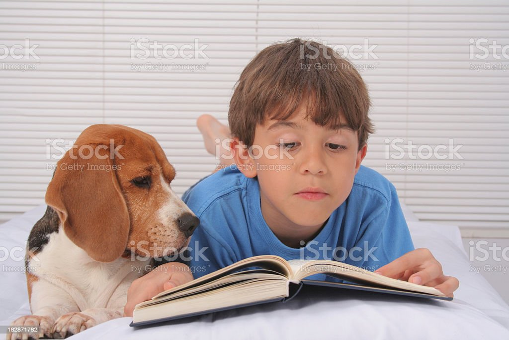 A boy reading in bed with his puppy royalty-free stock photo