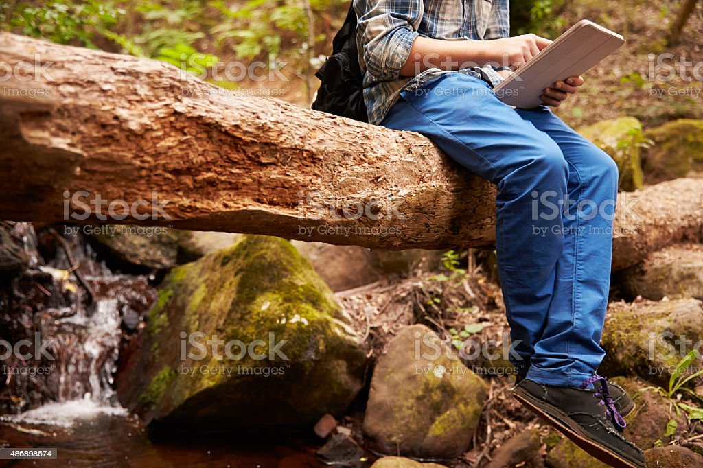 Boy sitting on  tree in forest using a tablet computer stock photo