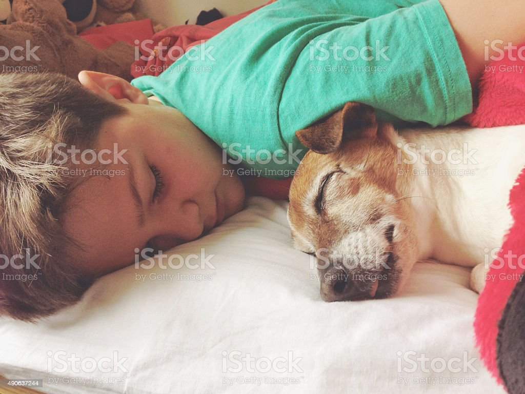 Boy sleeping with dog stock photo