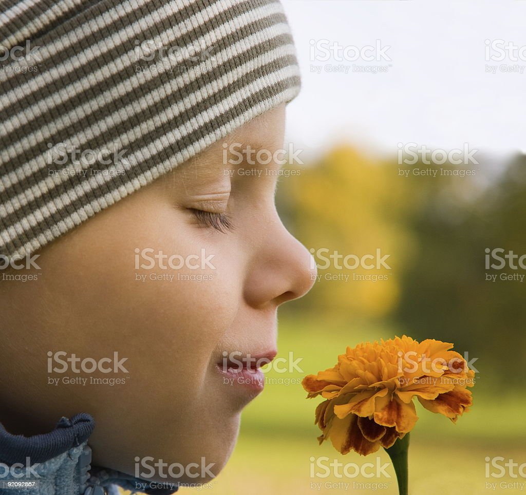 Boy smelling flower in autumn stock photo