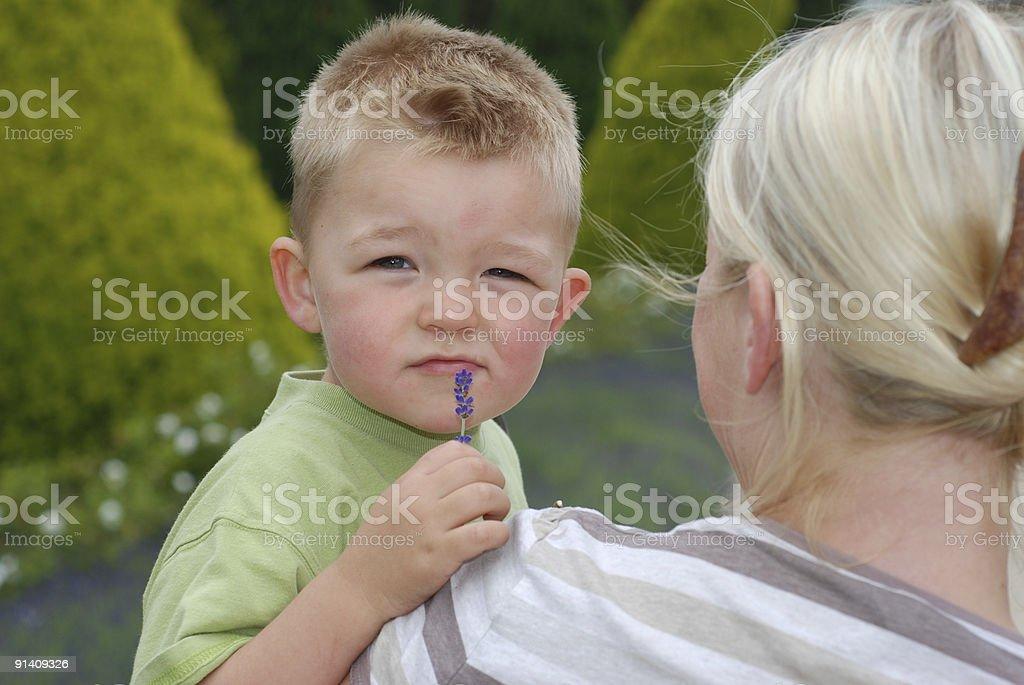 boy smells flower royalty-free stock photo