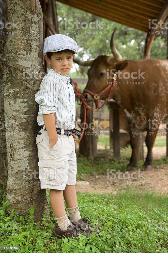 Boy Standing near Longhorn royalty-free stock photo