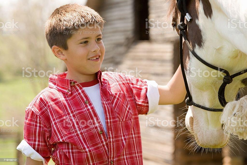 Boy stroking horse royalty-free stock photo