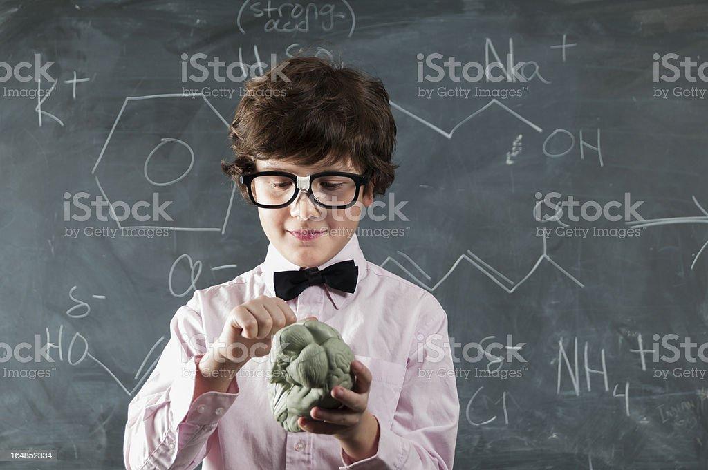 Boy Studying Brain royalty-free stock photo