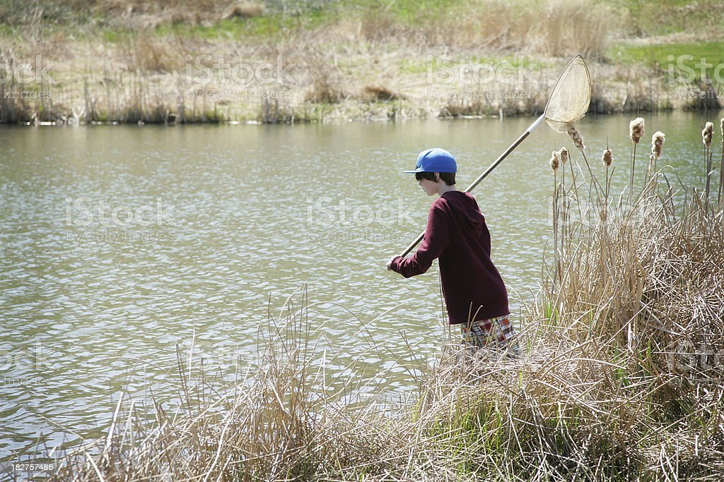 Boy Using Net by Pond- Homeschooling, Water Monitoring royalty-free stock photo