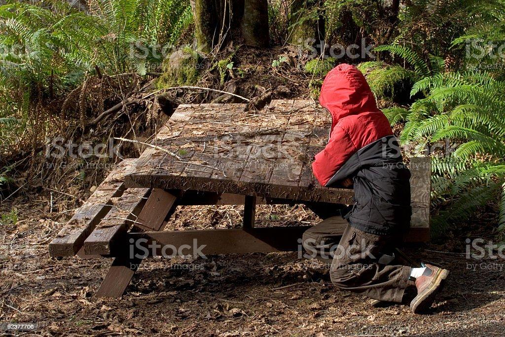 Boy, Waiting royalty-free stock photo