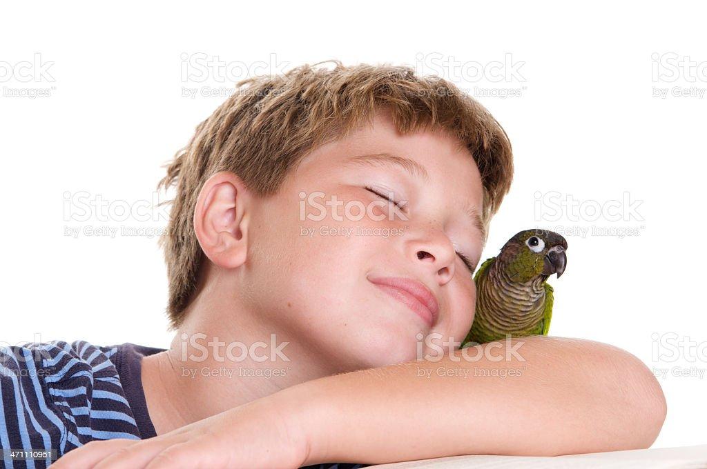 Boy Who Loves His Pet Bird stock photo