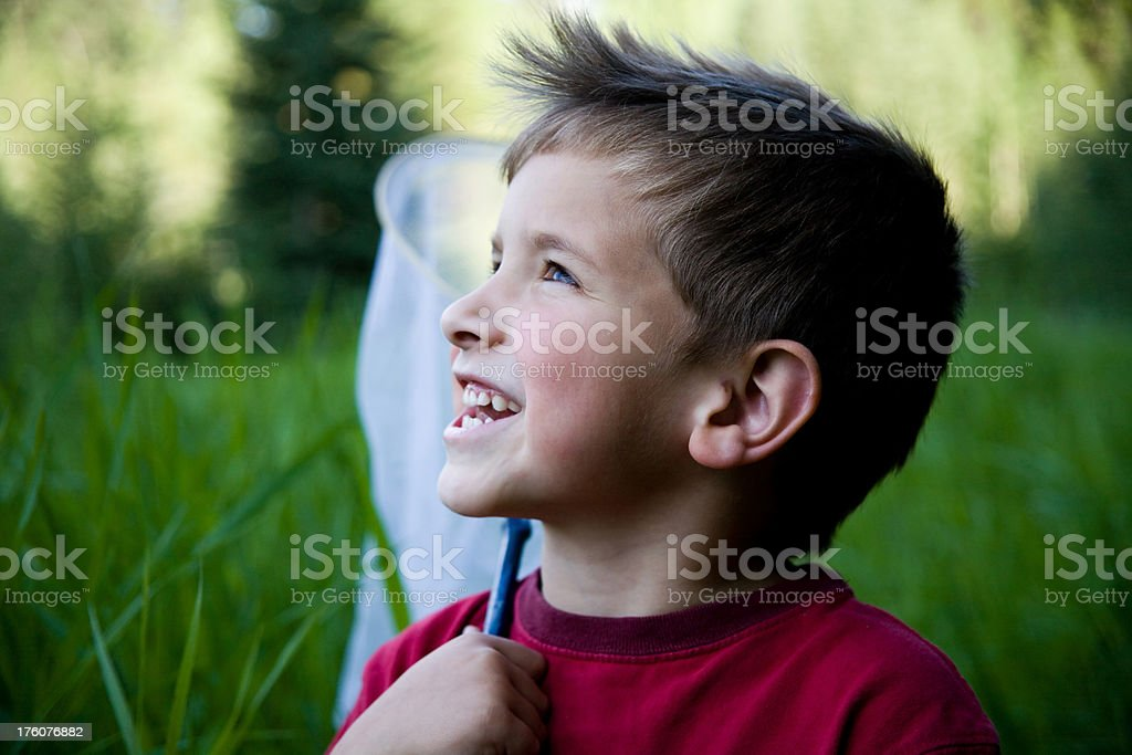 Boy with Butterfly net stock photo