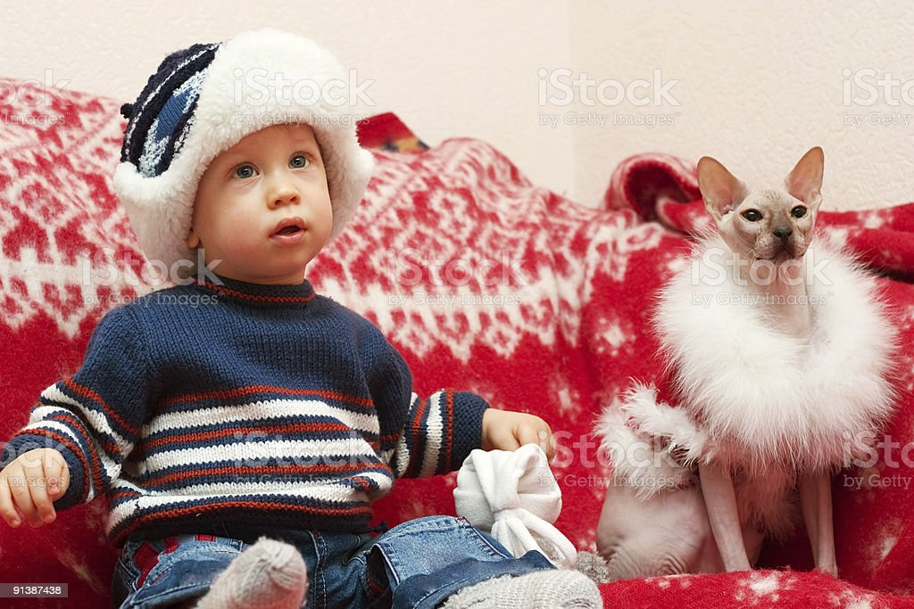 boy with cat Santa royalty-free stock photo