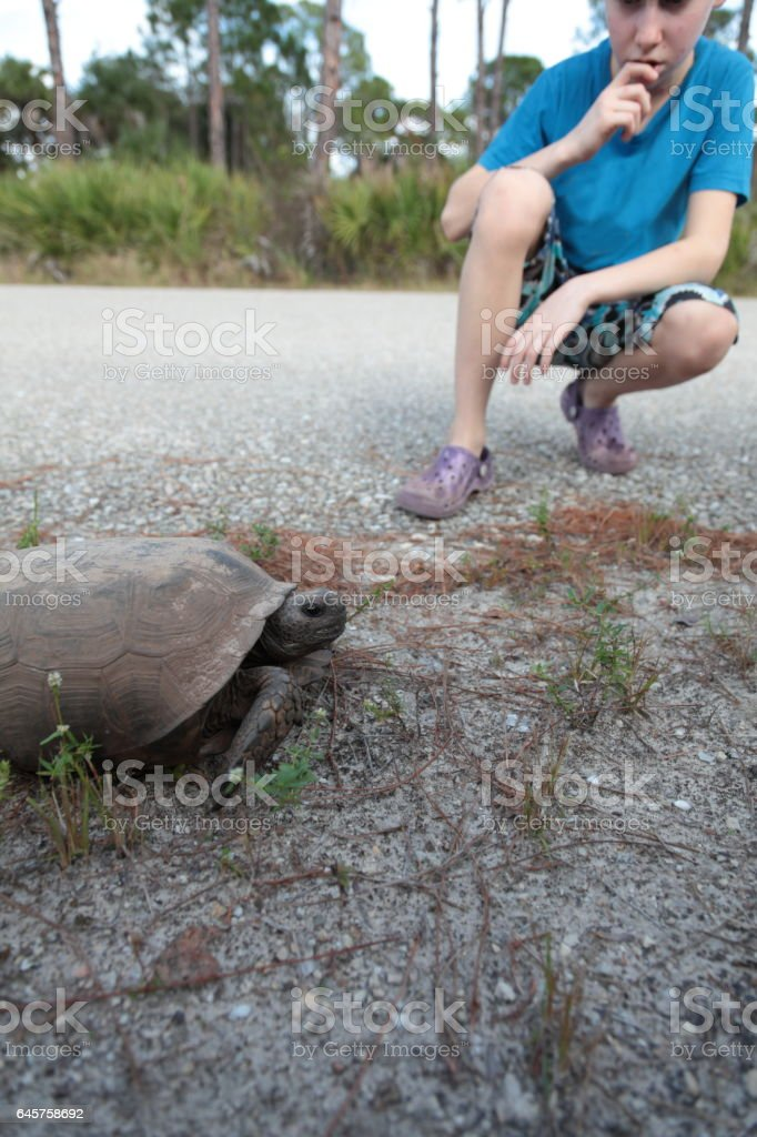 Boy with chickenpox is sitting near smiling turtle. stock photo