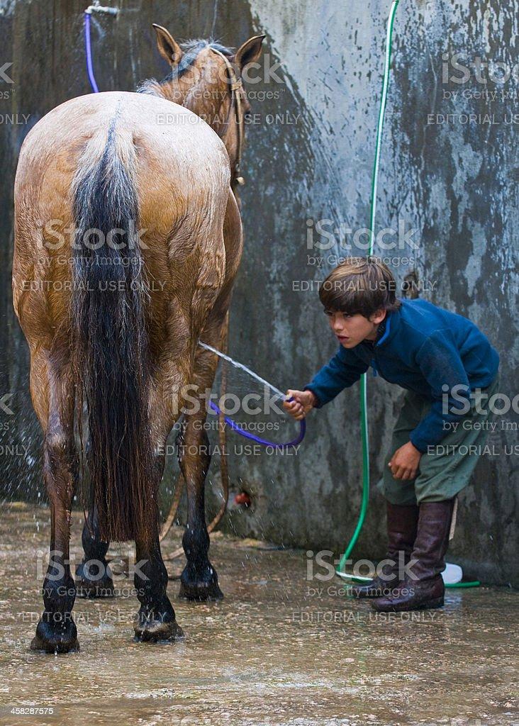 少年、彼の馬 ロイヤリティフリーストックフォト