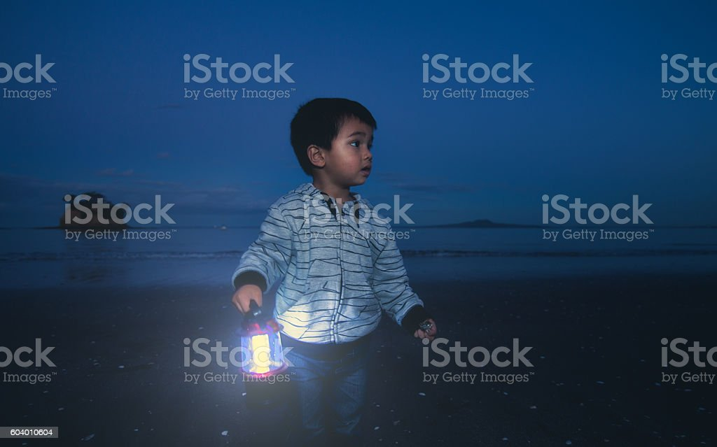 Boy with lantern. stock photo