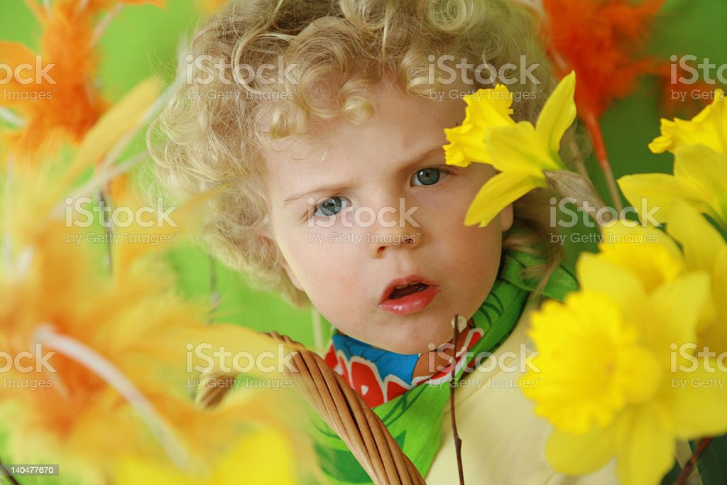 boy with light hair in spring colores royalty-free stock photo