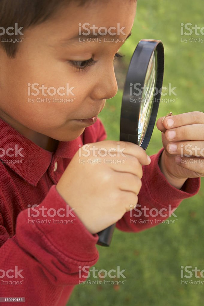 boy with magnifying glass stock photo