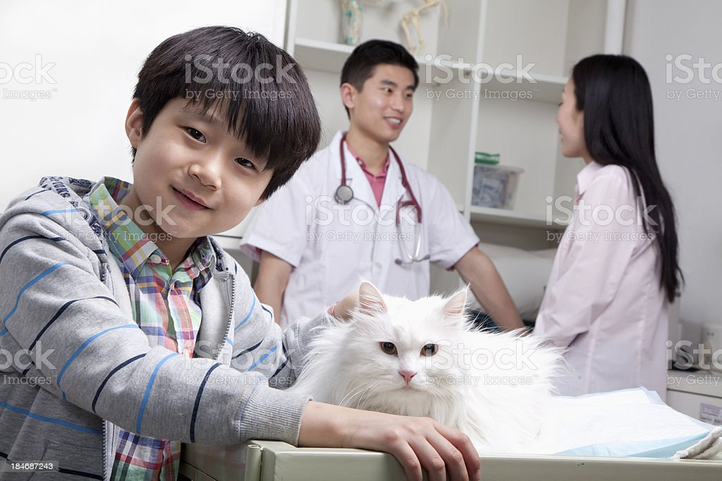 Boy with pet cat at veterinary office stock photo