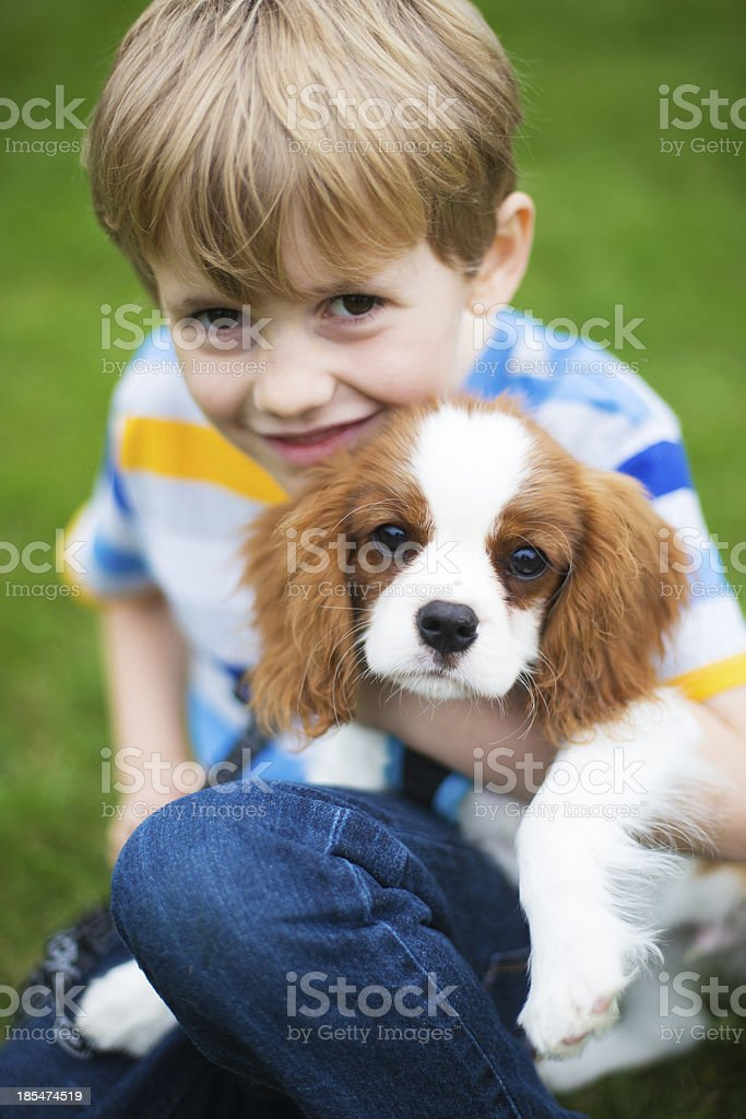 Boy With Pet King Charles Spaniel Puppy royalty-free stock photo