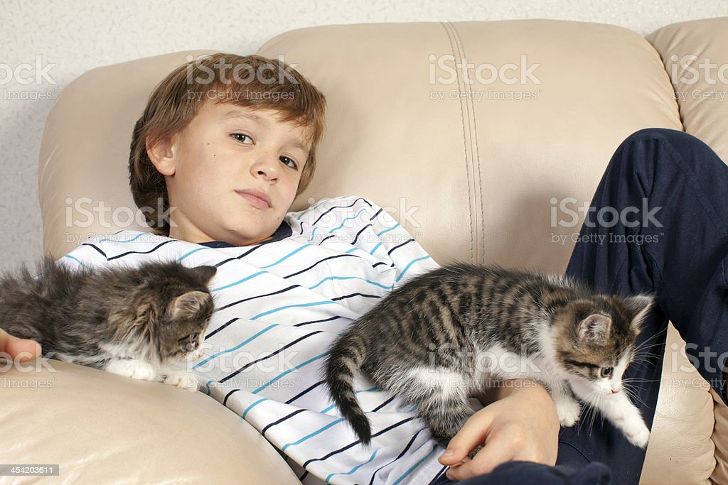 Boy with two kittens on couch. royalty-free stock photo