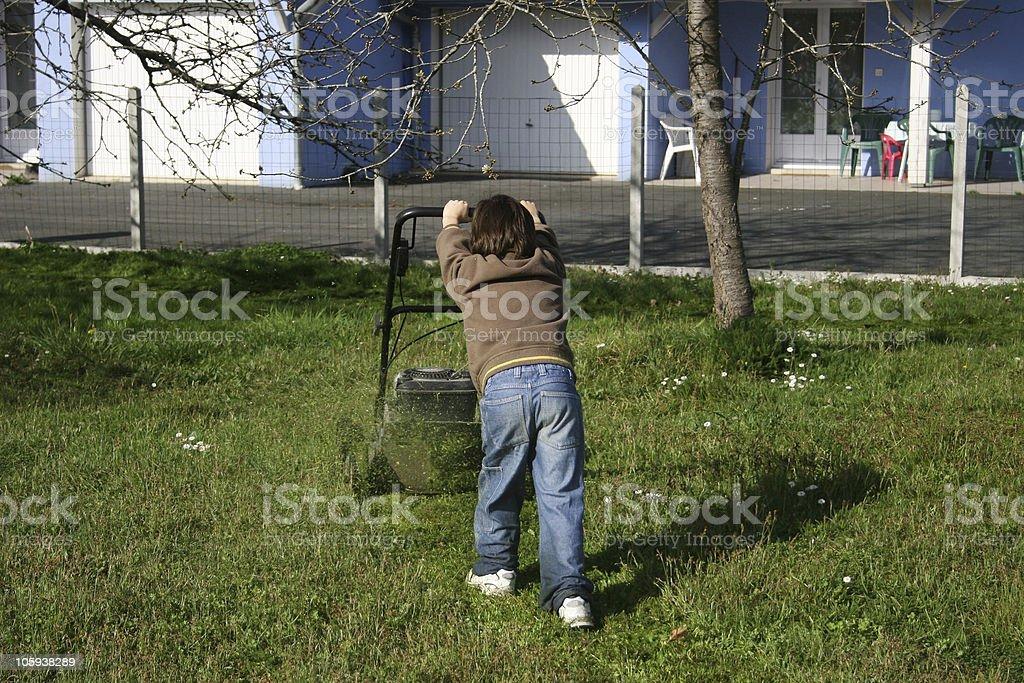 boy working in the garden stock photo