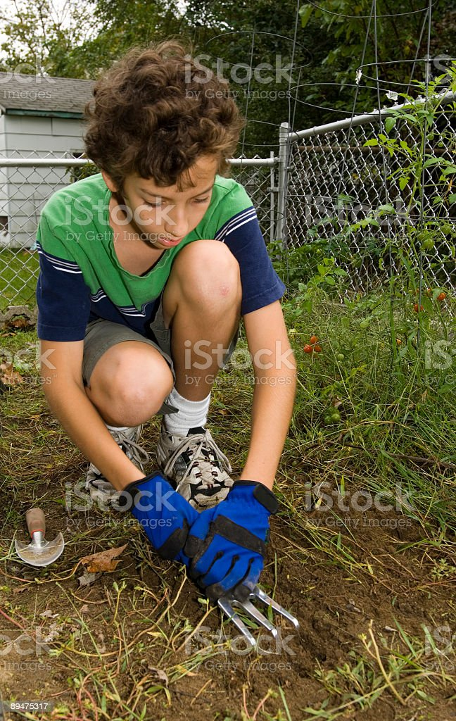 Boy Working in the Garden royalty-free stock photo