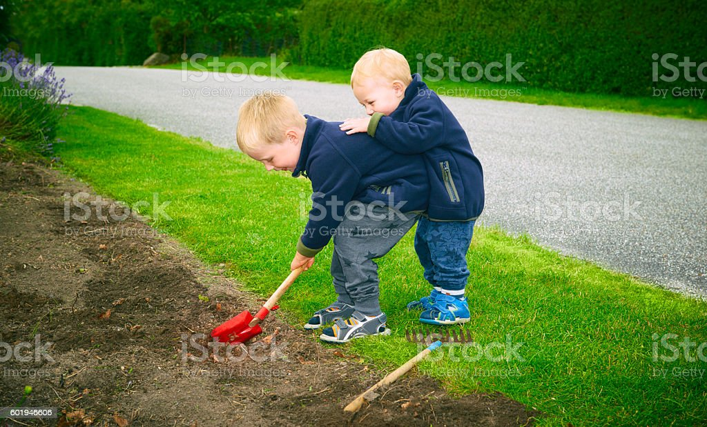 Boys 2 and 4 years old digging in the flowerbed stock photo