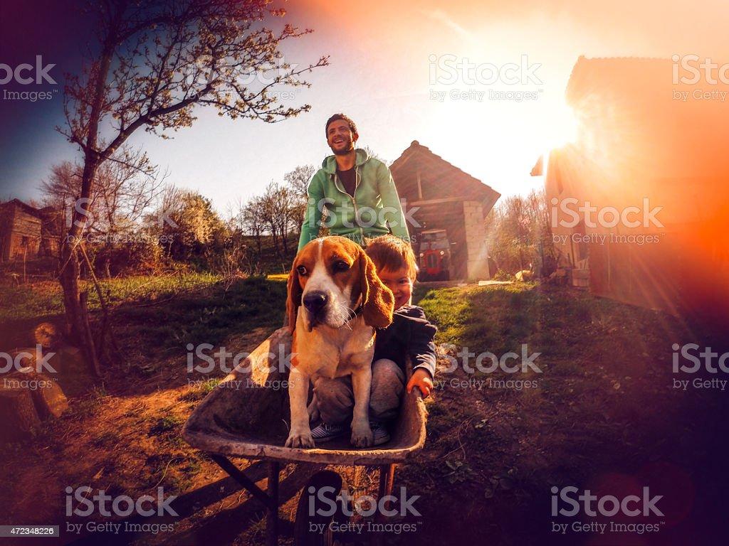 Boys at the farm stock photo