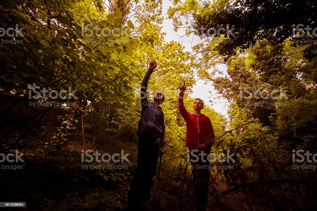 Boys discovering outdoors stock photo