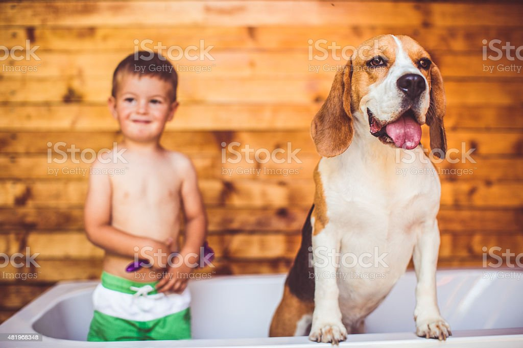 Boys having a bath stock photo