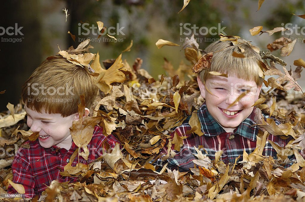 Boys in leaves royalty-free stock photo