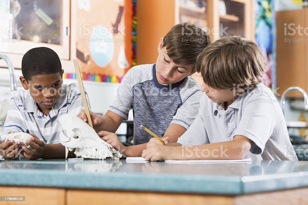 Boys in science class royalty-free stock photo